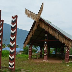 Welcome to The Nagaland
